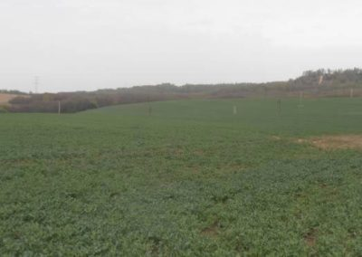 Real Estate with an area of 114 ha, Krzeszowice