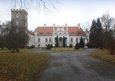 Palac, Janowice